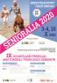 Senioralia 2020 - afisz.png