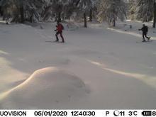 Narciarze na skiturach lekceważą zakaz wstępu na szlaki