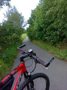 Zarośnięta ścieżka rowerowa