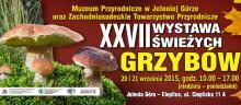 Wystawa świeżych grzybów