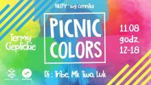 Kolorowy piknik przeniesiony