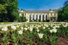 Ciesz się wiosną w Cieplicach!
