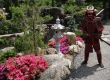 Dzień Samuraja w Ogrodzie Japońskim Siruwia