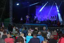 Tłumy na koncertach w Borowicach. Świetni wykonawcy i atmosfera