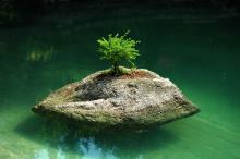 Ogród Japoński Siruwia w Przesiece do wyjątkowe miejsce w krajobrazie Karkonoszy