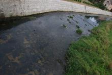 Rzeką płyną ścieki, a modernizacja oczyszczalni utknęła w martwym punkcie