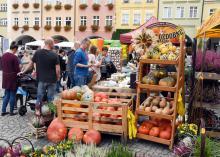 Tysiące produktów spod Śnieżki i kuchnia Makłowicza