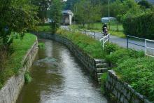 Kiedy Wody Polskie oczyszczą potoki  i rzeki w naszym regionie?
