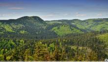 Góry Suche, Fot,: Polska-org