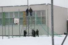 Orliki w śniegu